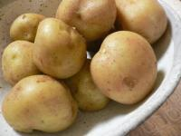 chin-potato0207.jpg