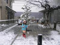 yukidaruma2006-4.jpg