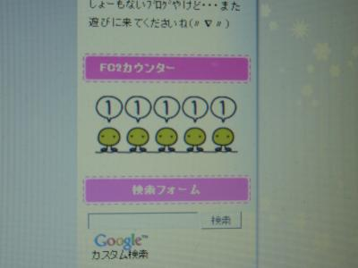 P1020465_convert_20110420234433.jpg