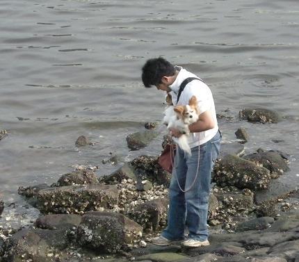 牡蠣がいっぱい