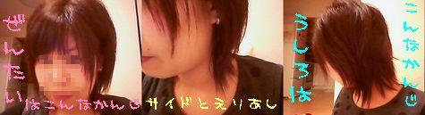miya060404.jpg
