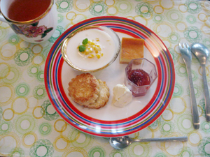 ドライマンゴープリン・バニラ風味のチーズケーキ・焼きたてスコーンと、紅茶と。