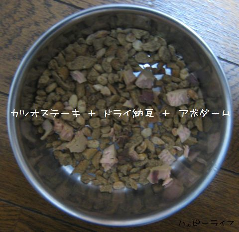 002_20090820204115.jpg