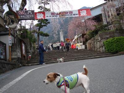 総本山身延山久遠寺