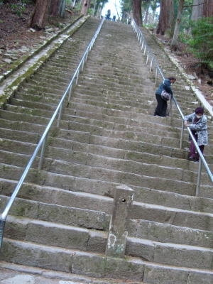 恐怖の階段!!
