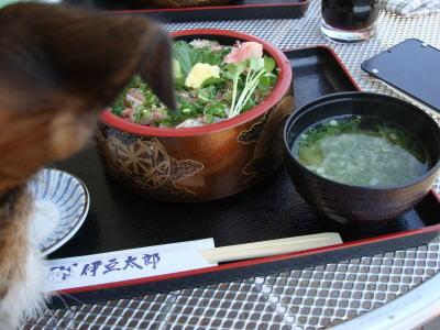 鯵(アジ)のたたき丼