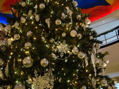 パンパシクリスマスツリー