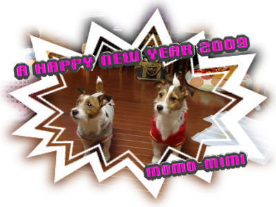A HAPPY NEW YEAR 2009 momo-mimi