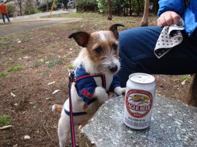 モモとビール