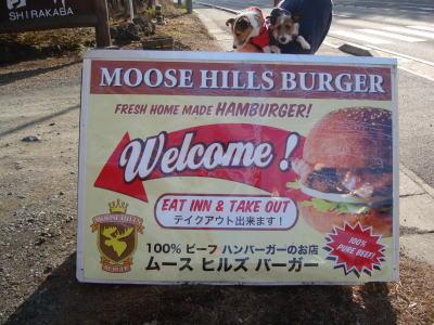 MOOSE HILLS-1
