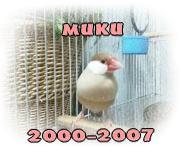MUKU FOREVER