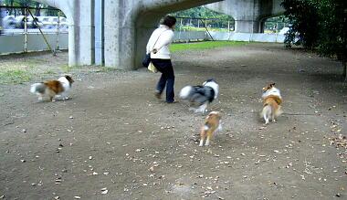 さあ、走るよ~!!