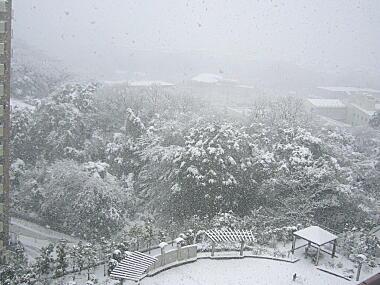雪だ~!!