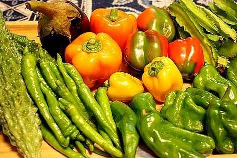 カラフル夏野菜♪