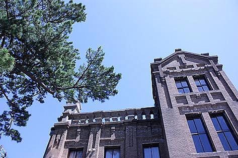 松の木と♪