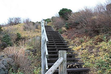 整備された階段♪