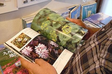 九重の山野草の本♪