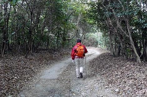 雑木林の道を♪