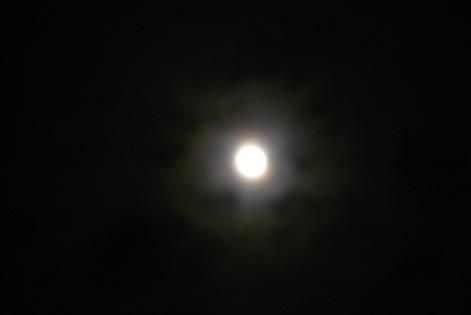 月明かりの出発♪