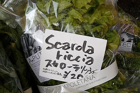 宗像でイタリア野菜♪
