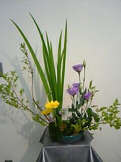 garden-t2.jpg
