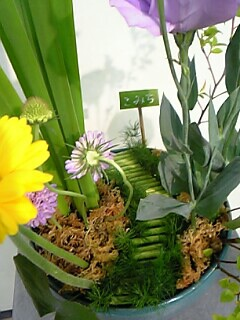 garden-t3.jpg