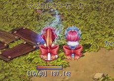 TWCI_2010_3_13_23_44_18.jpg