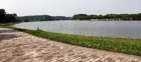2009_0619katsushika0028.jpg