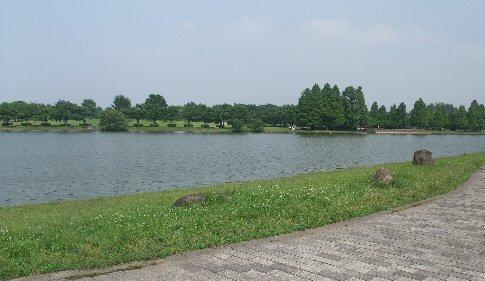 2009_0619katsushika0029.jpg