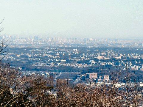 b2009_0115takao0017.jpg