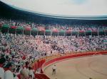 牛祭り 012