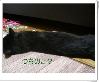 200907022.jpg