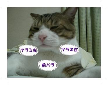 200907153.jpg