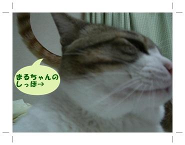 200907156.jpg