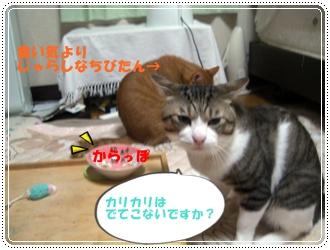 200908113.jpg