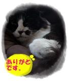200909015.jpg