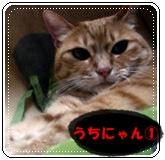 200909028.jpg