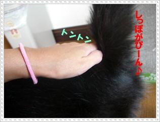 200909032.jpg