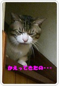 200909111.jpg