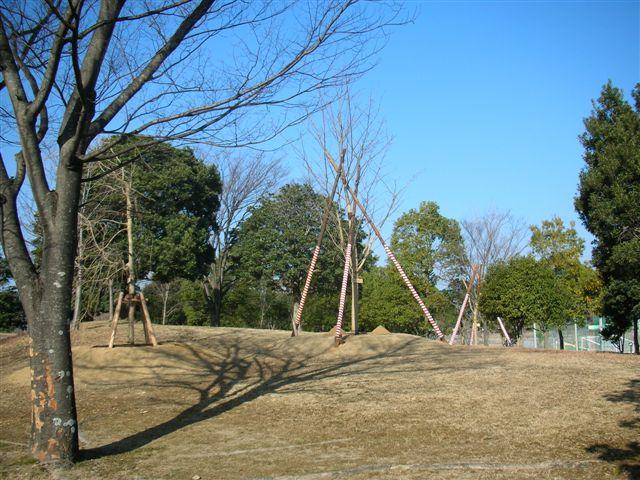 市村2010.1.26植樹 003