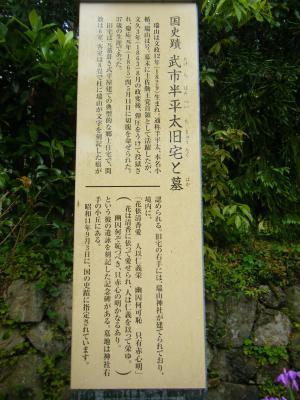 DSCF8359_convert_20100525103241.jpg