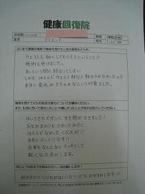 IMG_0378_20120416213232.jpg