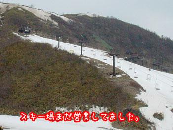 DSC05453.jpg