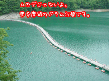 DSC07046.jpg