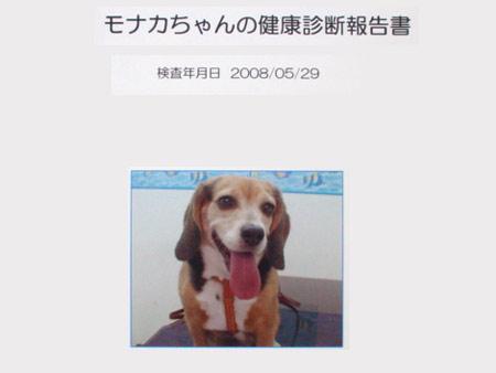DSC09471.jpg