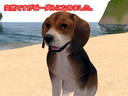 Snapshot_075.jpg