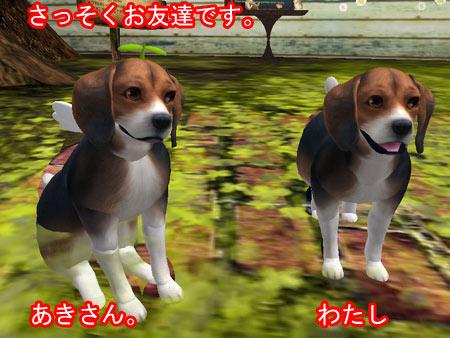 Snapshot_078.jpg