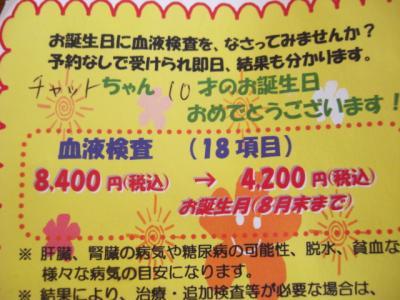 CIMG1883(1).jpg
