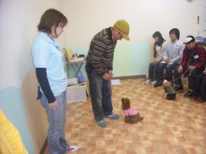 2009-1-18puppyparty3.jpg