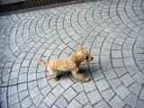 2009-3-13youchien11.jpg
